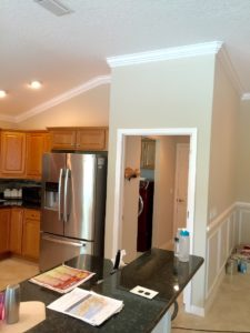 Crown Molding 5 inch 12