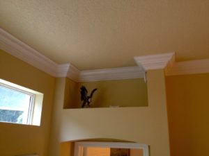 Crown Molding 7 inch 19