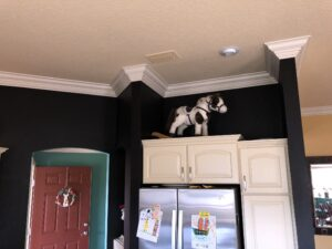 8.25 crown molding0004