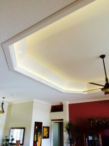 ceiling tray0020