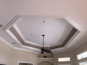 ceiling tray0023