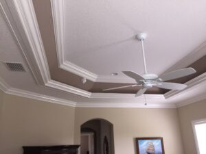 ceiling tray0027