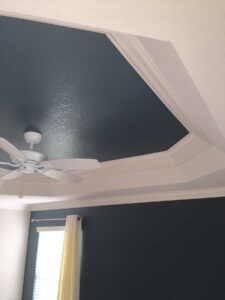 ceiling tray0028