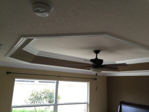 ceiling tray0029