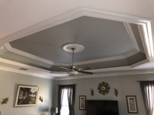 ceiling tray20003