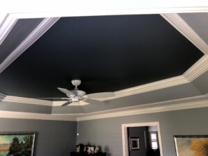 ceiling tray20010
