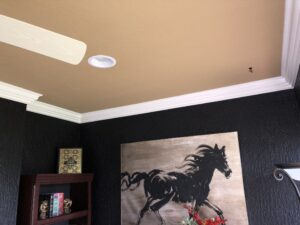 crown molding 20006